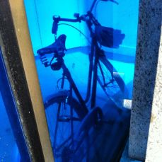 underwater bicycle in its natural habitat