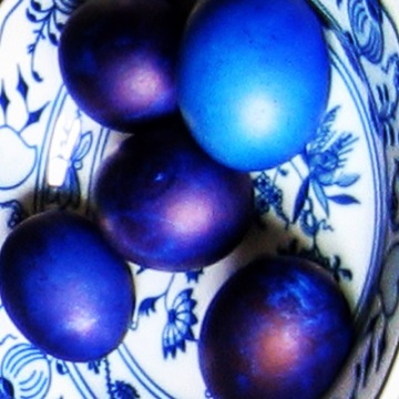 speckled-egg-blues-inst